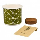 Orla Kiely Grow Your Own Basil Kit