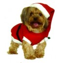 Dogs and Co Christmas Fancy Dress Costumes for Dogs Santa Outfit, 14