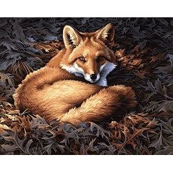 Dimensions Paintworks Paint by Numbers Sunlight Fox Kit