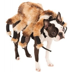 Official Rubie's Giant Spider Pet Dog Halloween Costume, Size